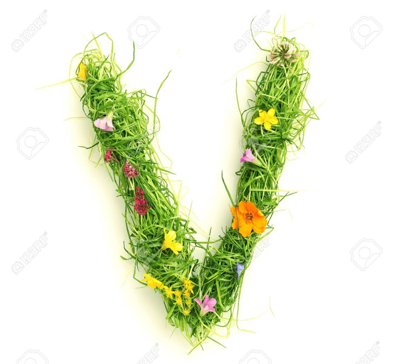 Letters Made Of Flowers And Grass Isolated On White Stock Photo