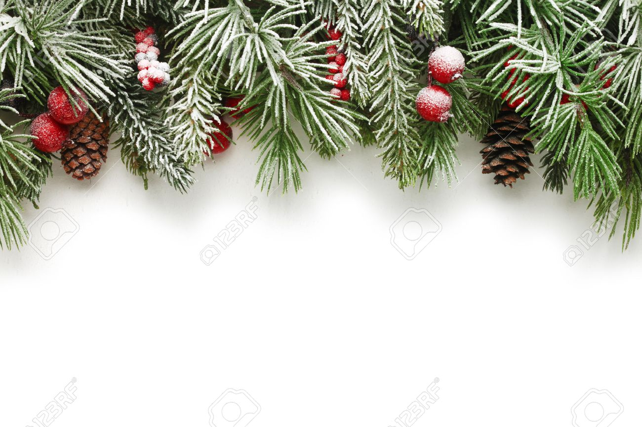 snow covered christmas tree branches background stock photo 34064887