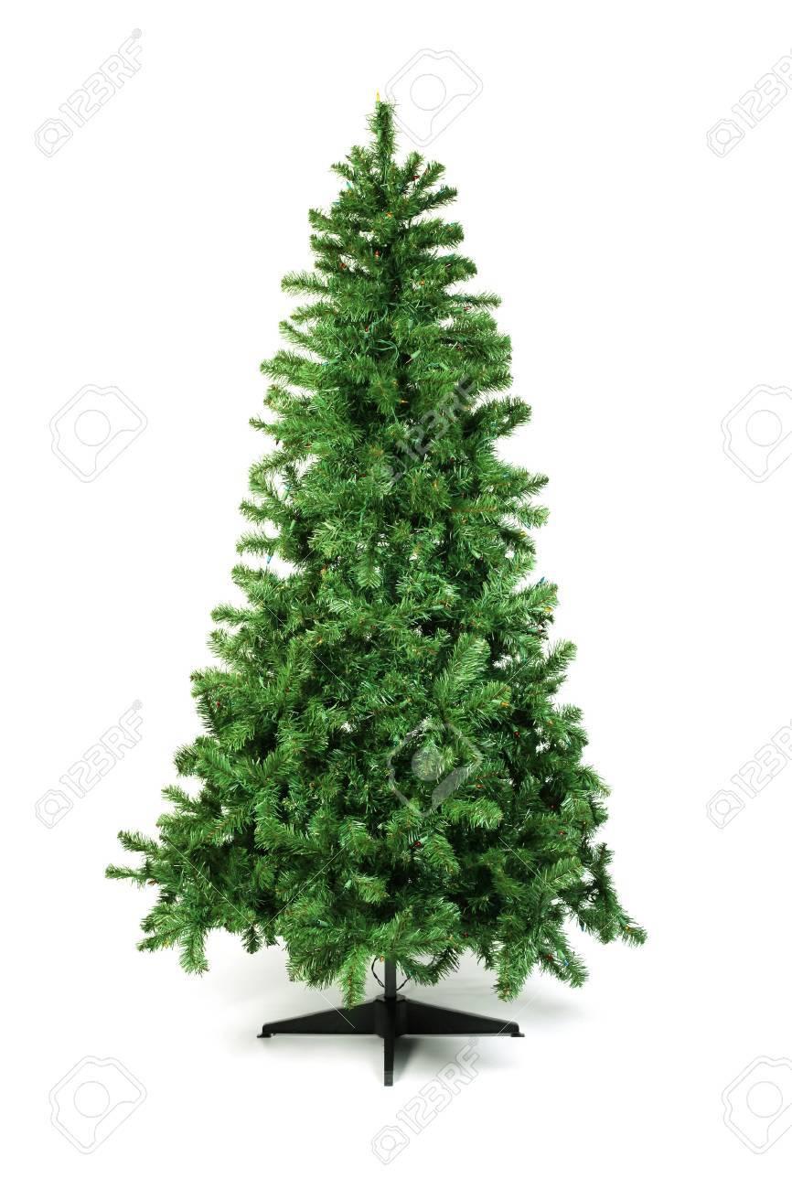 Unadorned Christmas tree isolated on white - 50227271