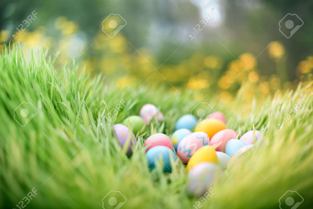 Colorful painted Easter eggs hidden in grass for an Easter egg hunt. - 166132277