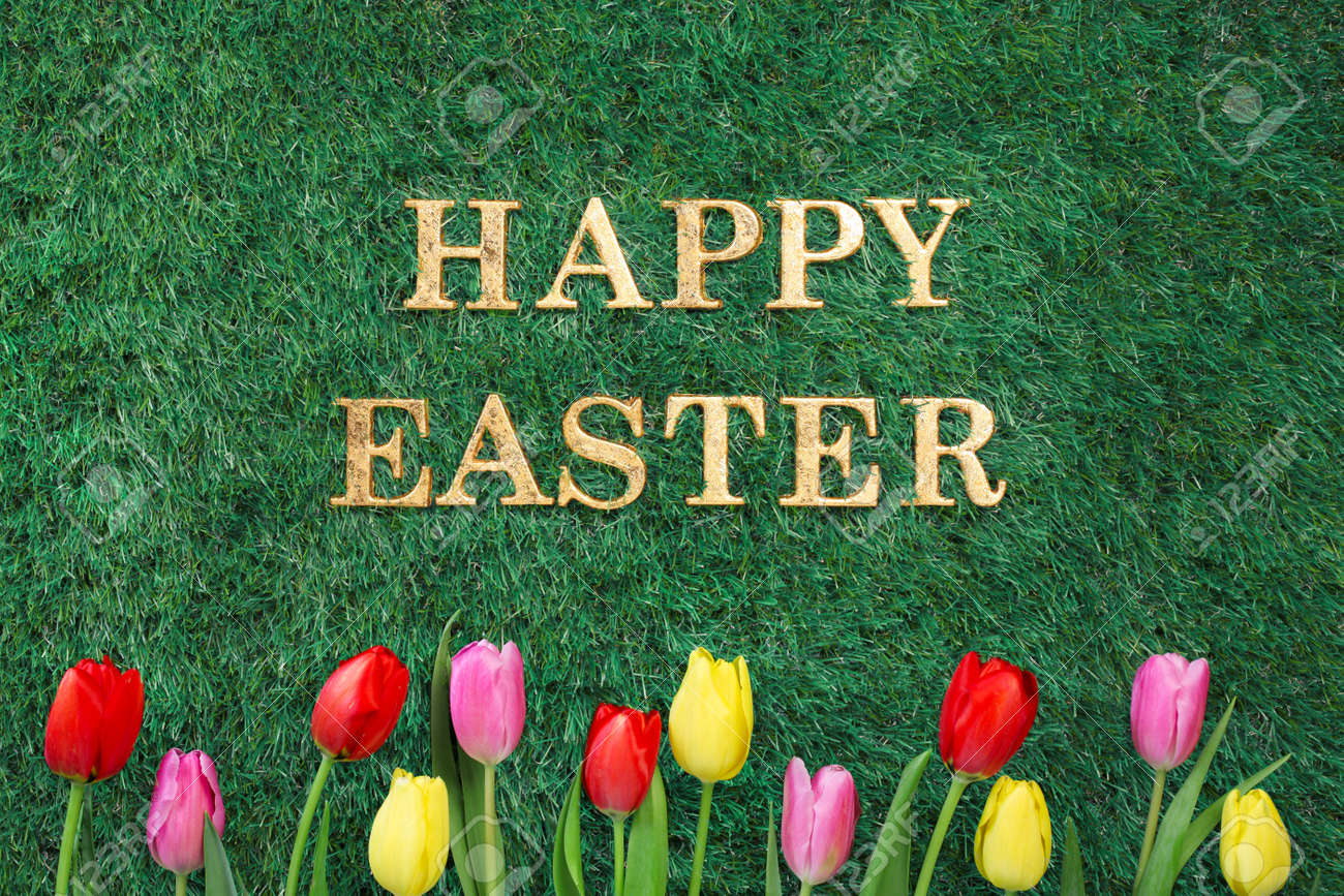 Happy Easter text on green grass with colorful tulips. - 166132304