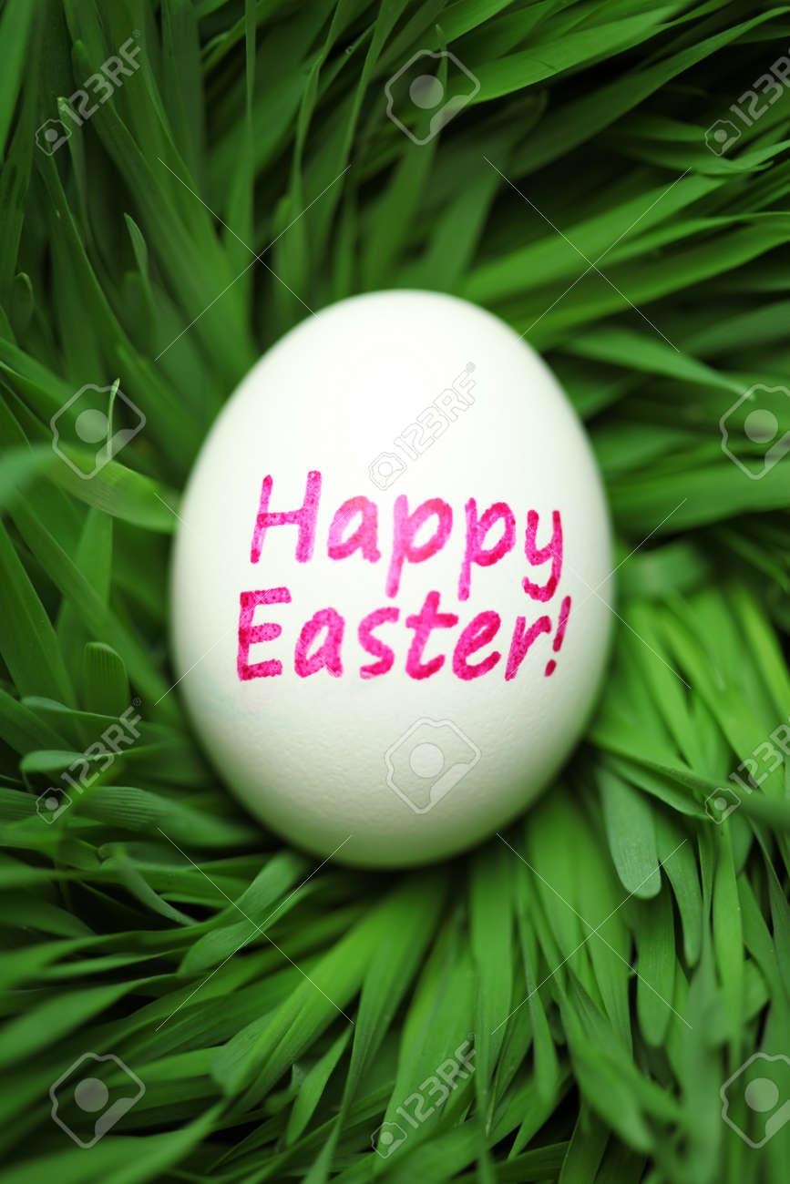 Single Happy Easter egg hidden in grass - 166132325