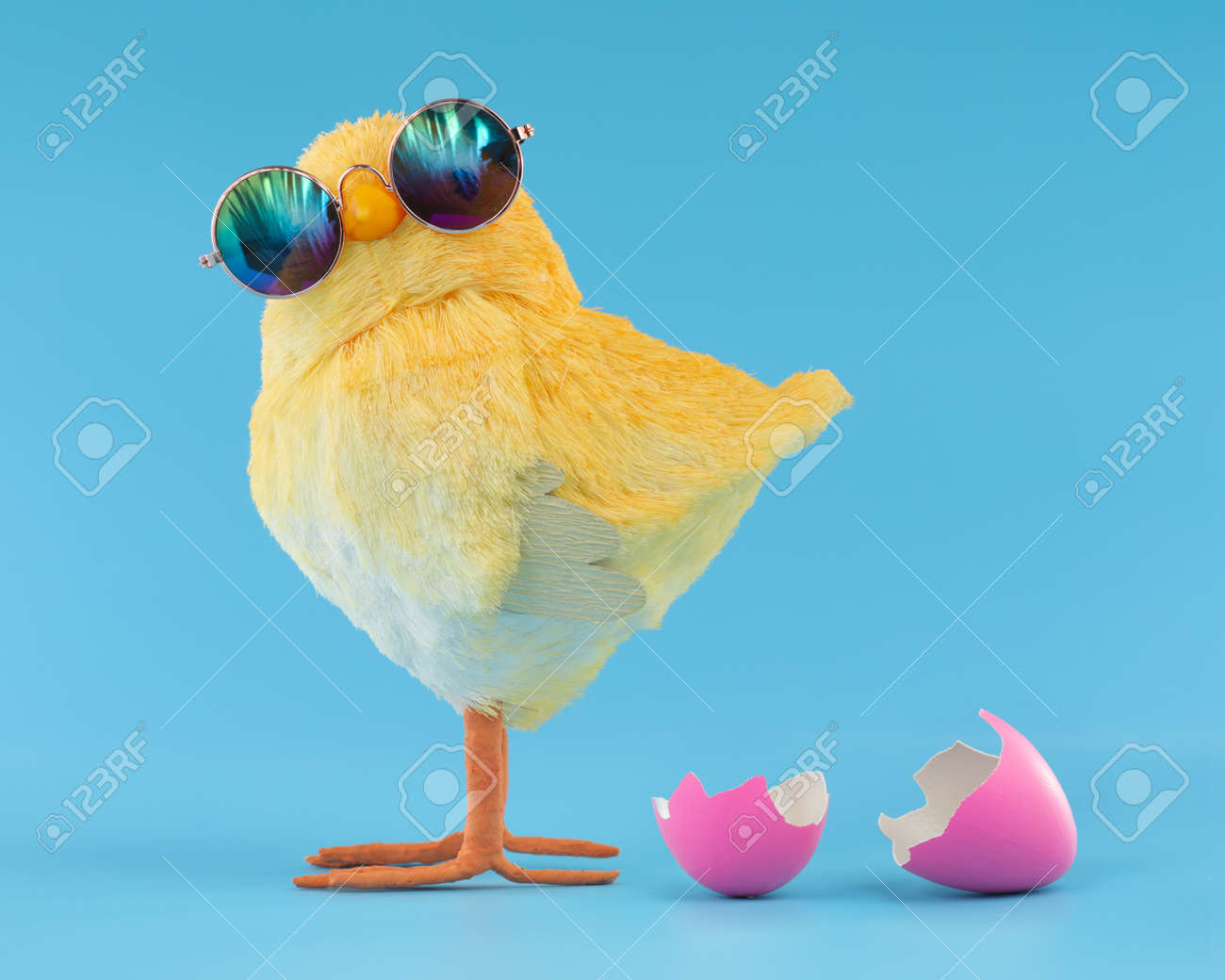 Easter decoration of a yellow chick wearing silly sunglasses with a pink cracked, hatched Easter egg. - 166138554