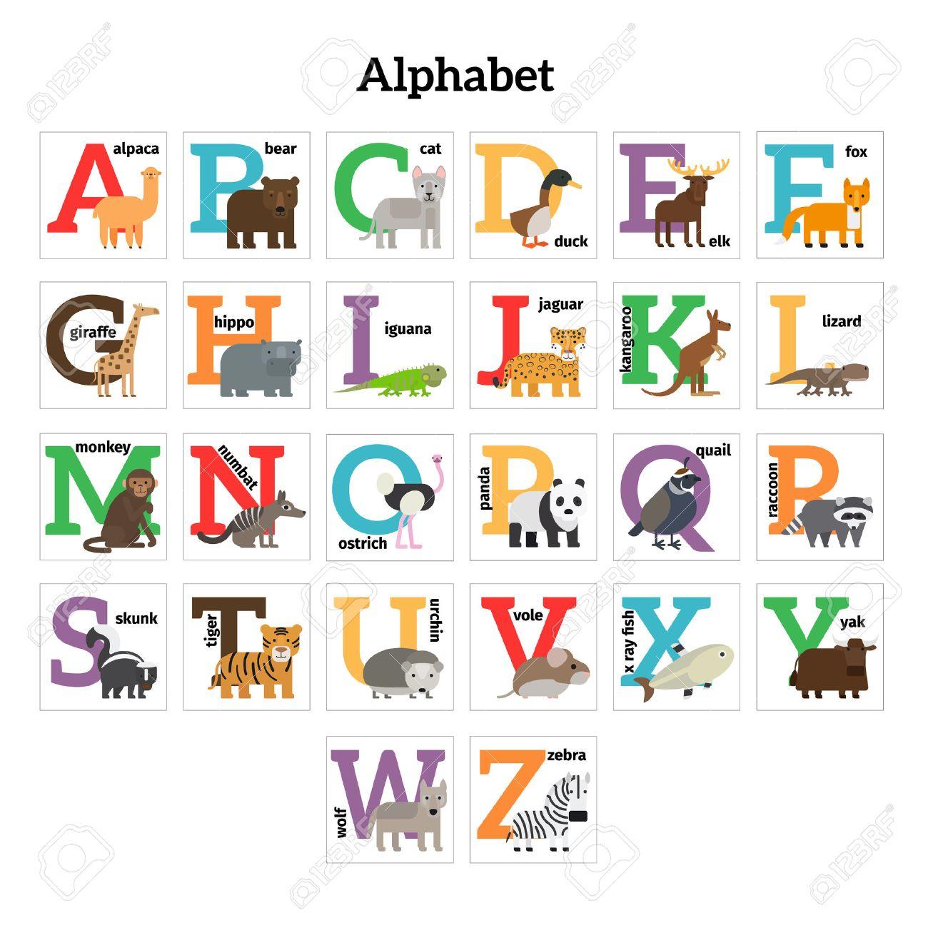 Animaux Anglais Zoo De L Alphabet L Education Prescolaire Des Enfants Vector Illustration Clip Art Libres De Droits Vecteurs Et Illustration Image 48756232