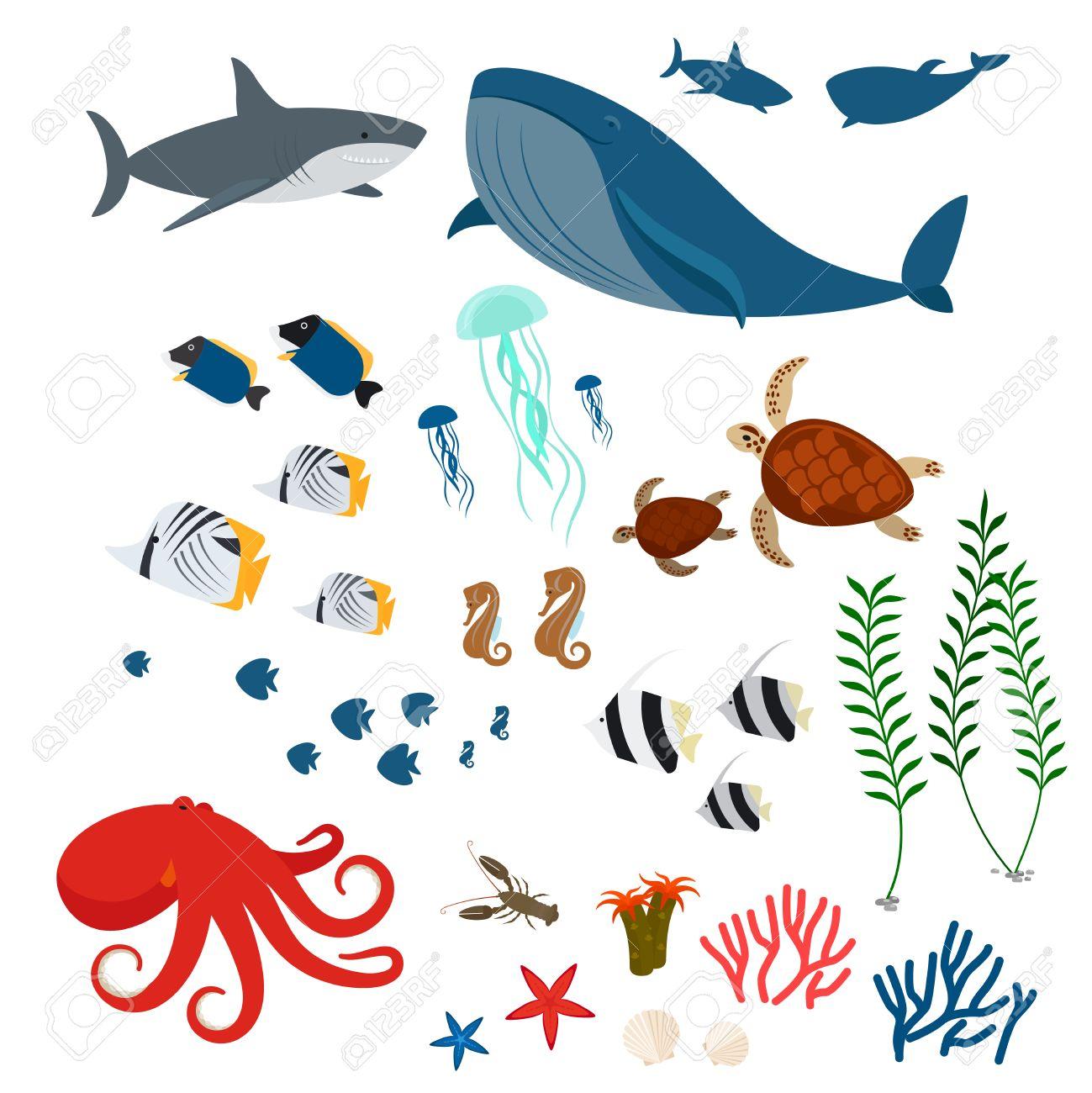 ocean animals sea fauna and sea fishes ocean fauna icons on