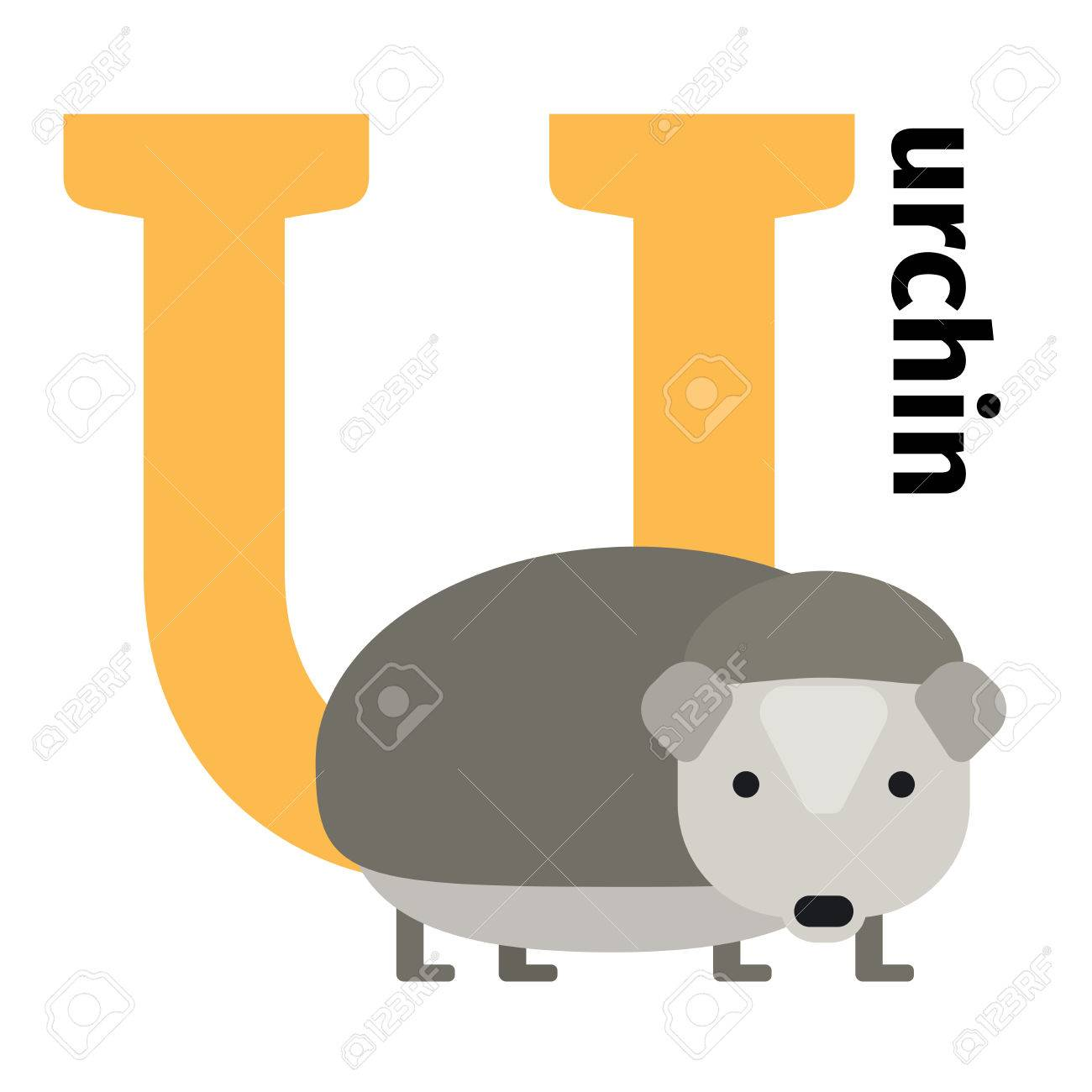 English Animals Zoo Alphabet With Letter U. Urchin Vector ...