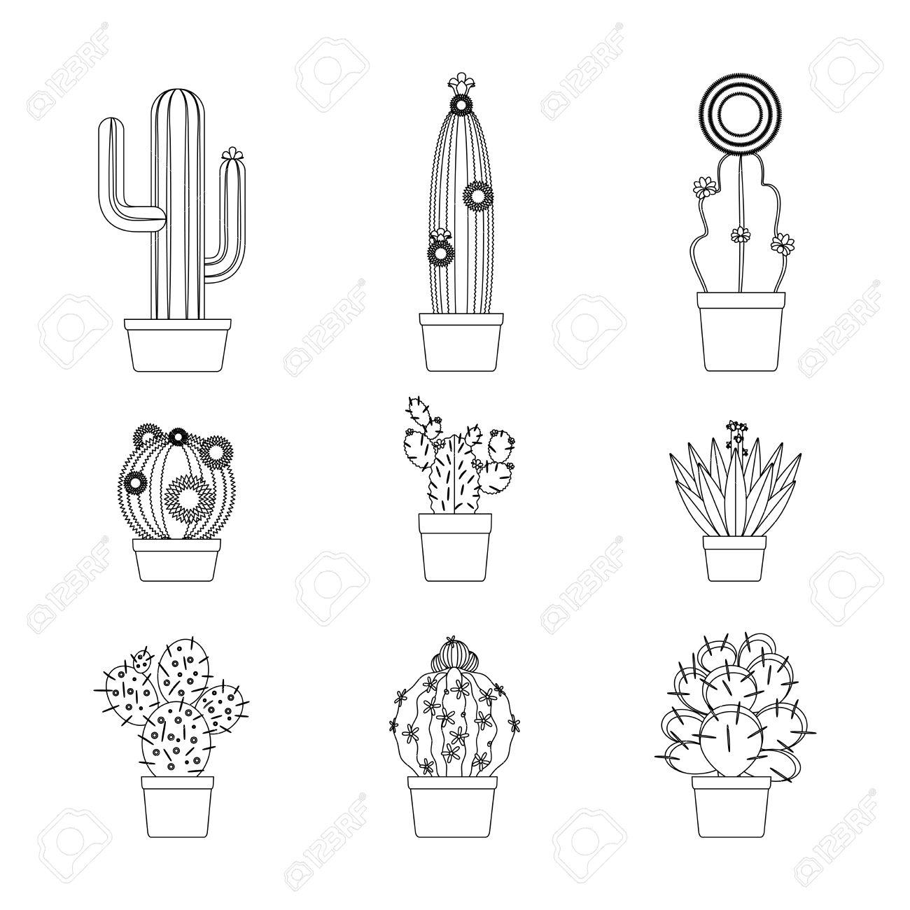 Aislado Icono De Cactus Delgada Línea Arte Fijó Para El Diseño De ...