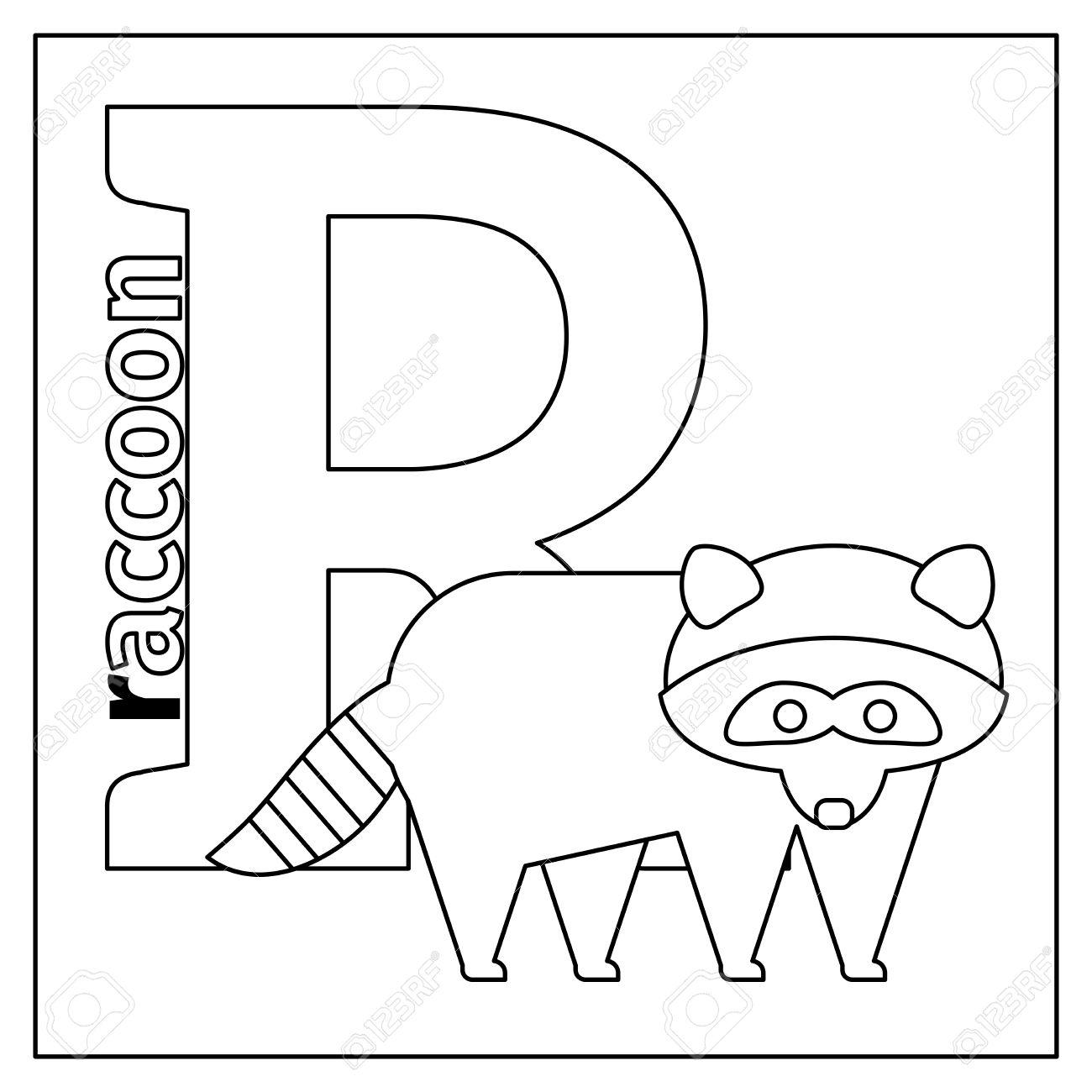 Dibujo Para Colorear O Tarjeta Para Los Niños Con Alfabeto Inglés Animales Del Zoo Mapache Ilustración Vectorial Letra R