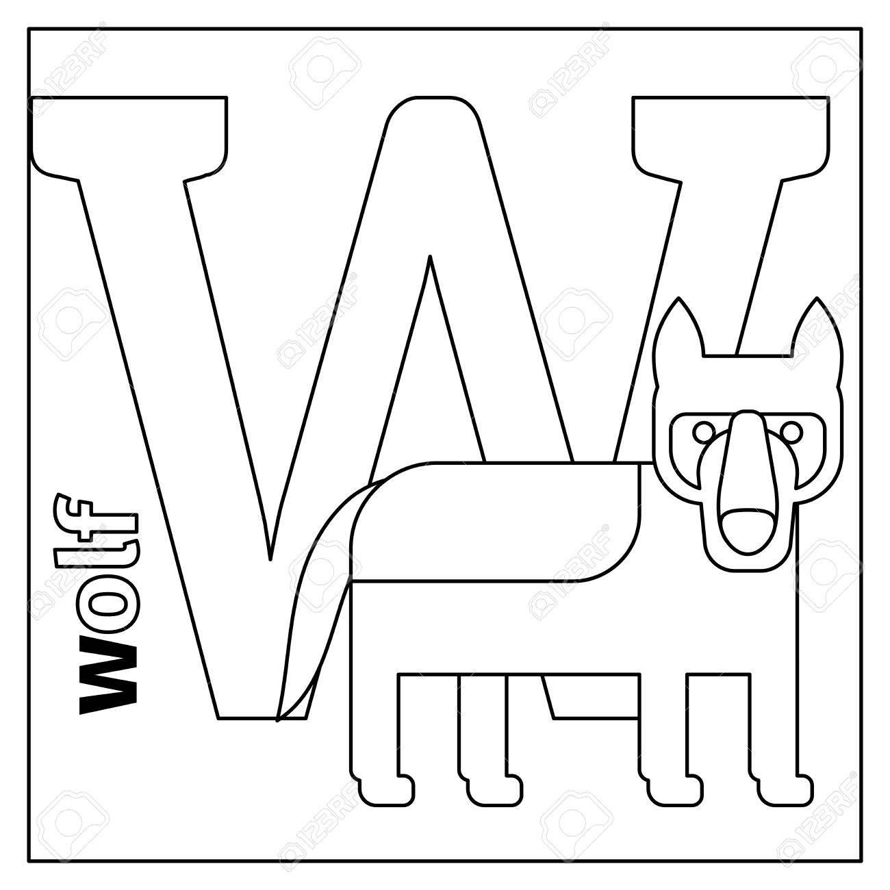 Dibujo Para Colorear O Tarjeta Para Los Niños Con Alfabeto Inglés Animales Del Zoo Wolf Letra W Ilustración Vectorial