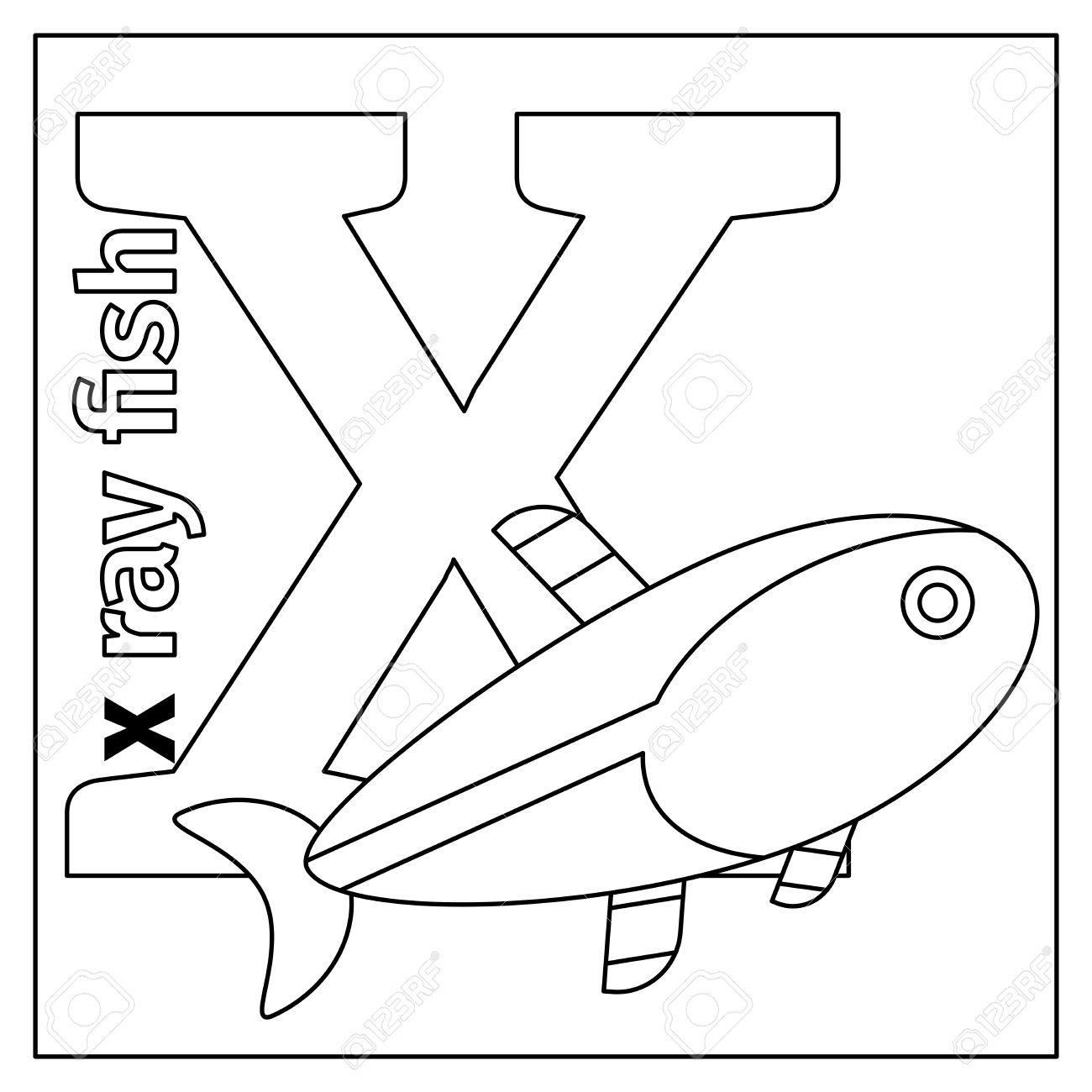 Dibujo Para Colorear O Tarjeta Para Los Niños Con Alfabeto Inglés Animales Del Zoo X Ray Peces Letra X Ilustración Vectorial