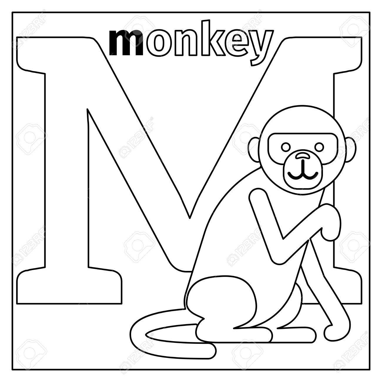 Dibujo Para Colorear O Tarjeta Para Los Niños Con Alfabeto Inglés Animales Del Zoo Mono Ilustración Vectorial Letra M