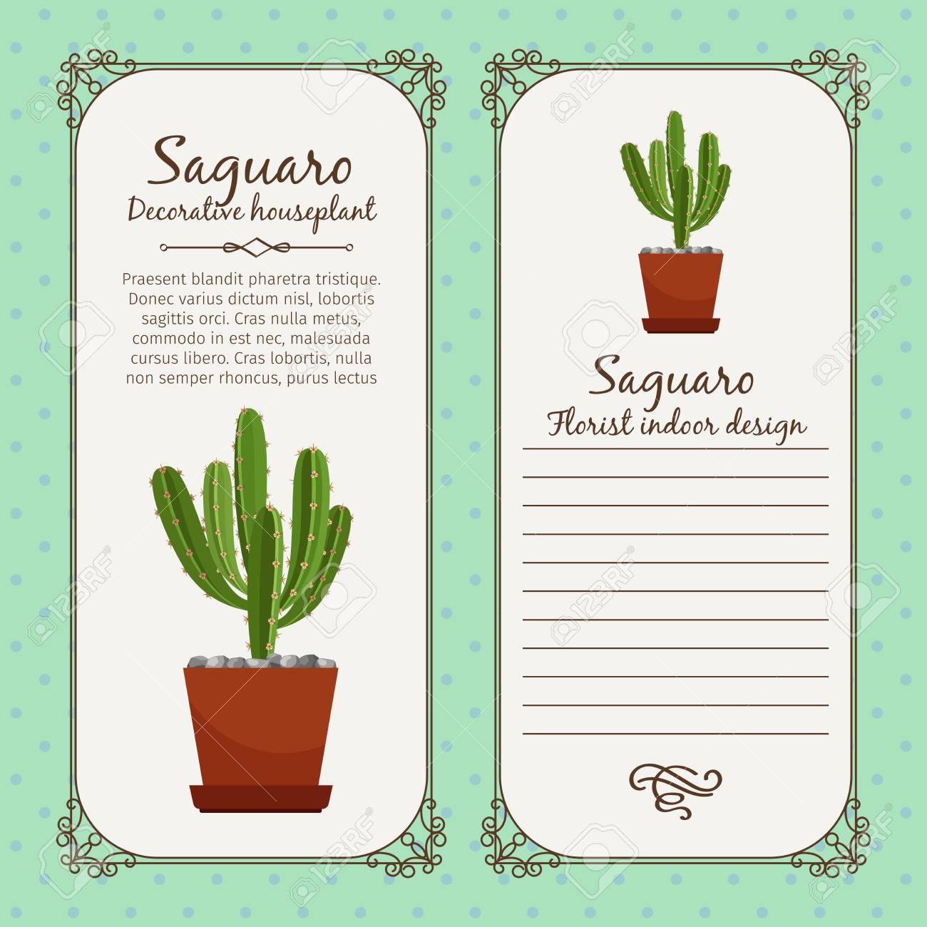 Vector Vintage Label Template With Decorative Saguaro Plant In Pot Illustration Jpg 1300x1300 Flower