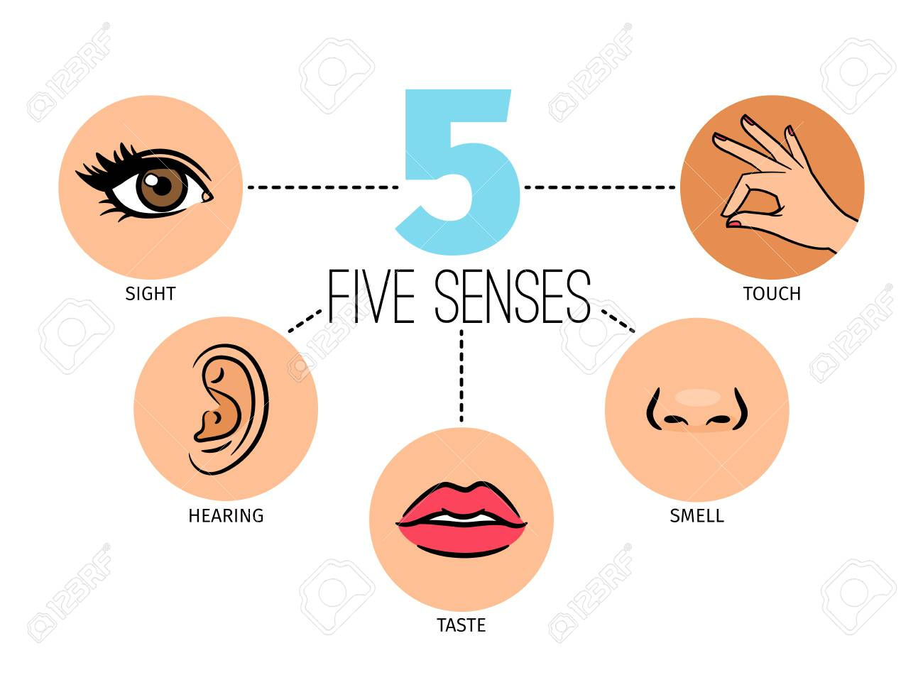 Five human feelings. Mouth or lips, hand and nose, eye and ear icons, sight and smell, touch, hearing and taste senses - 101930700