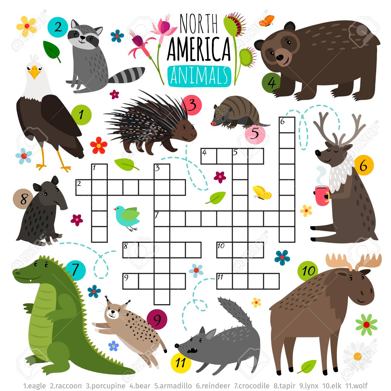 Animals Crossword Kids Words Brainteaser With North America Royalty Free Cliparts Vectors And Stock Illustration Image 102845676