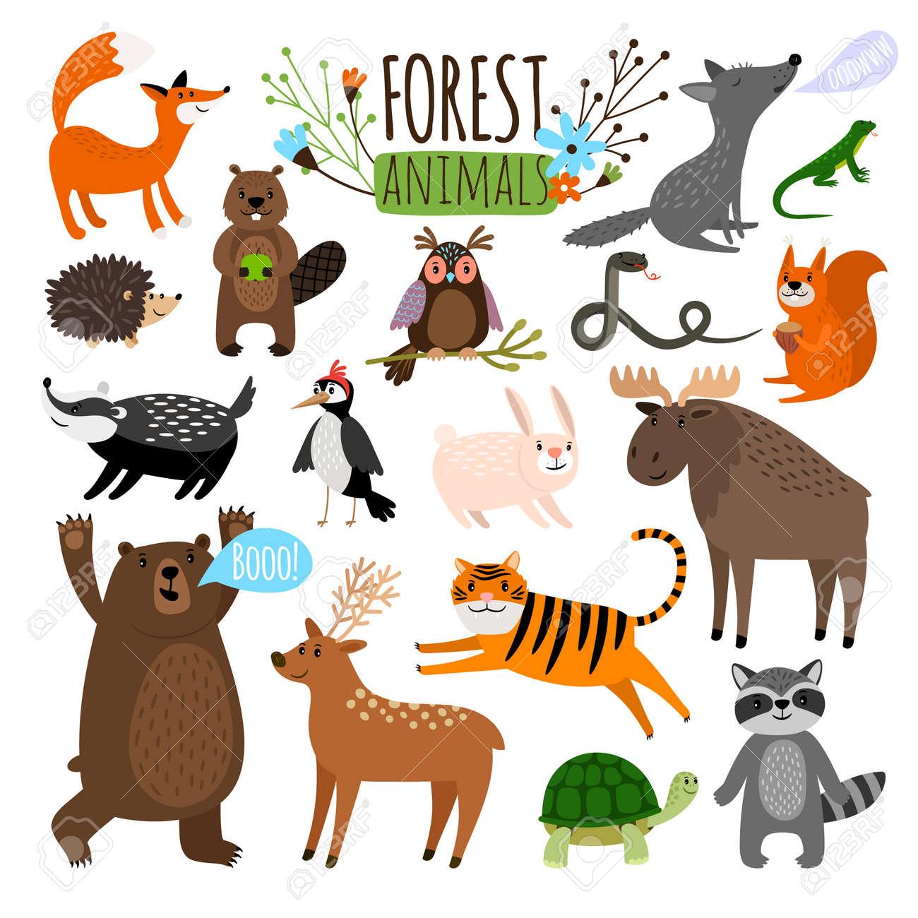 Forest animals set - 167508229