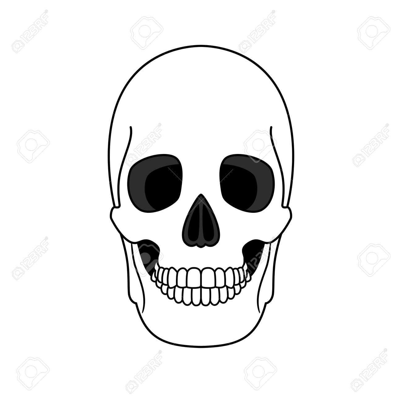 Decoration outline skull - 171345007