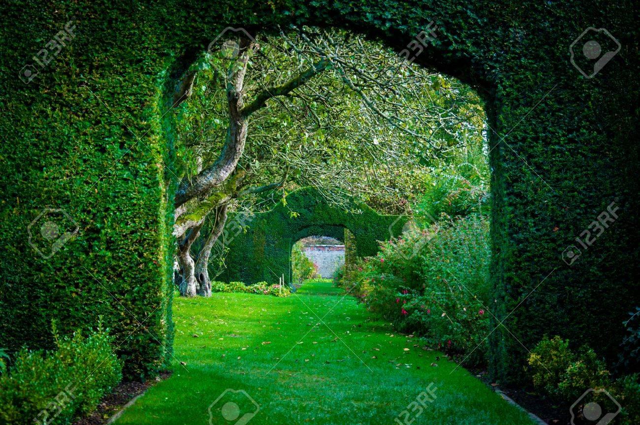 Arcos De Plantas Verdes En Ingles Jardin Campo Fotos Retratos - Arcos-de-jardin