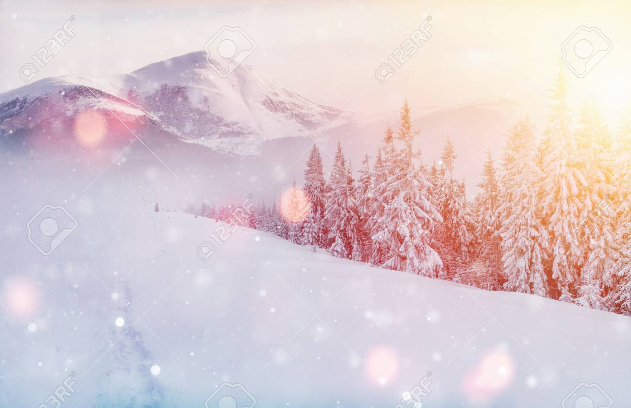 Mysterious winter landscape majestic mountains in winter. Magical winter snow covered tree. Photo greeting card. Bokeh light effect, soft filter. Carpathian. Ukraine. Europe - 91277816