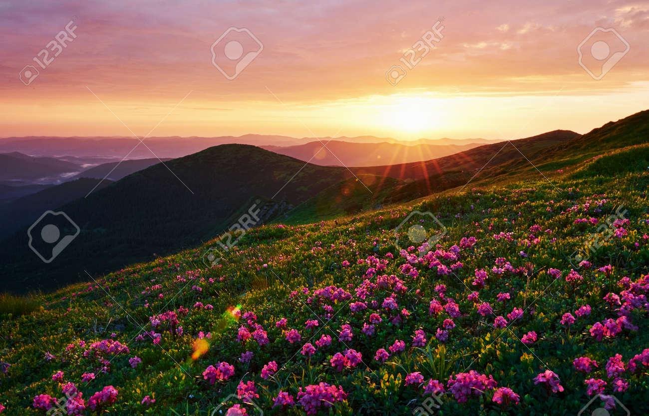 Cloudly sky. Majestic Carpathian mountains. Beautiful landscape. Breathtaking view. - 135511227