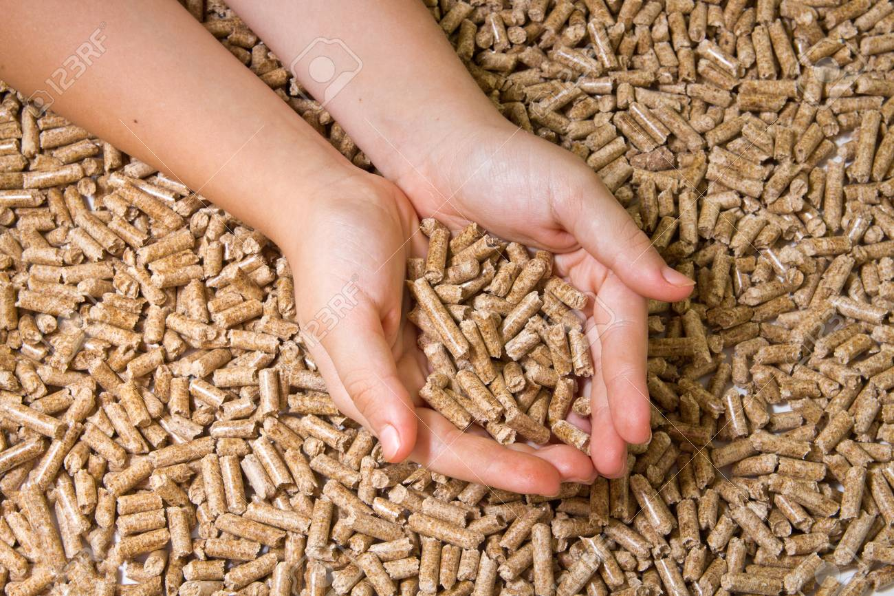 Wood Pellets Close Up Biofuels Alternative Biofuel From Sawdust Stock Photo Picture And Royalty Free Image Image 93688209