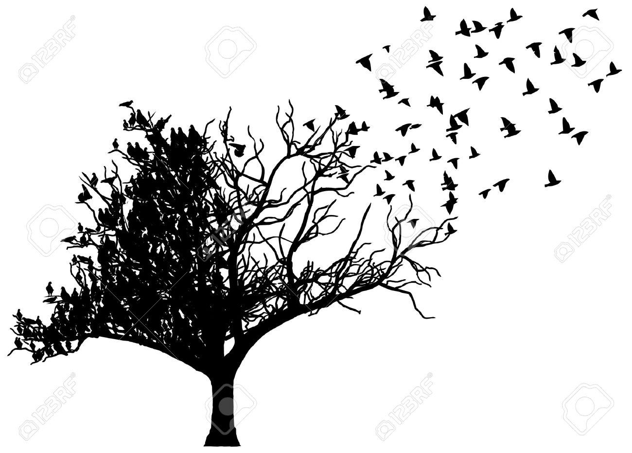 art tree birds - 14964492