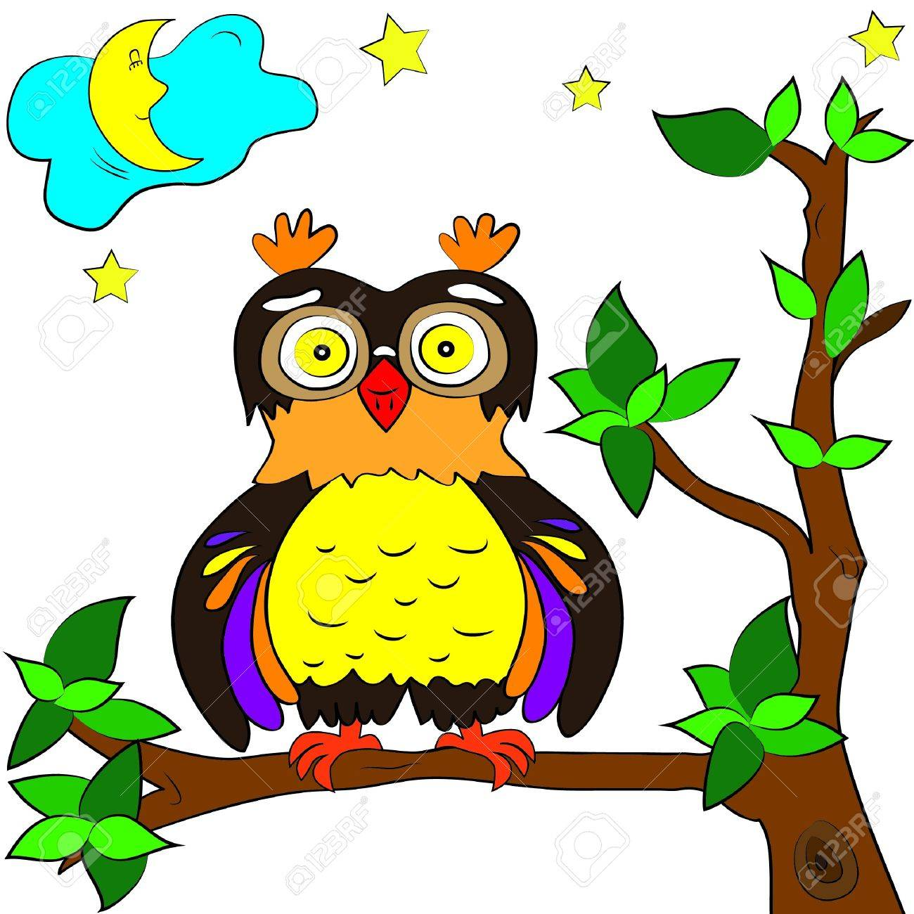 owl color page royalty free cliparts vectors and stock