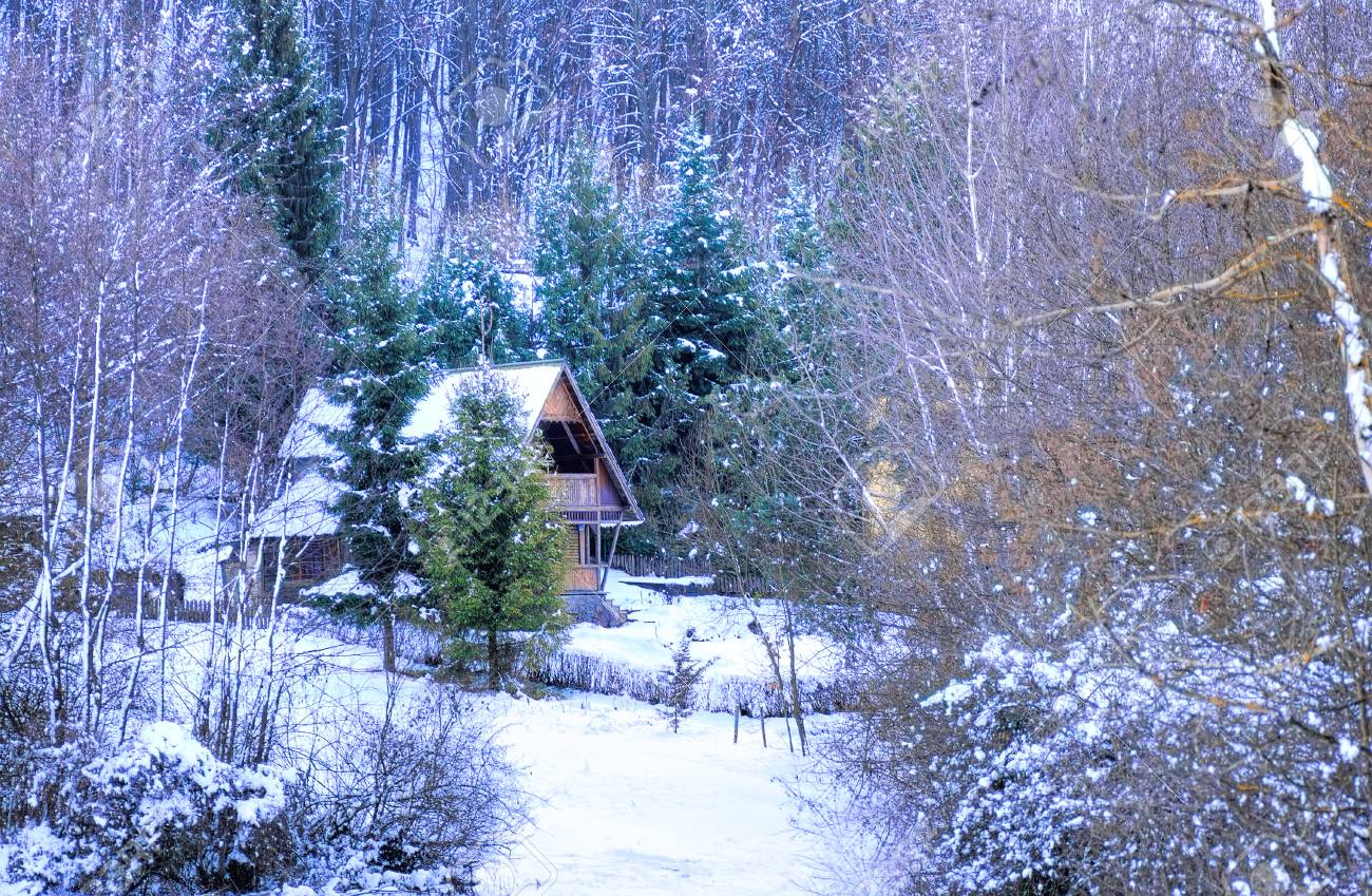 Hidden wooden forest house at winter time stock photo 53358786