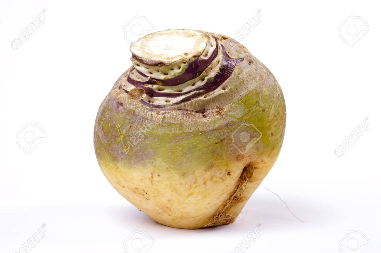 Swede or Turnip? depends where you live. isolated against white background. Stock Photo - 5977276