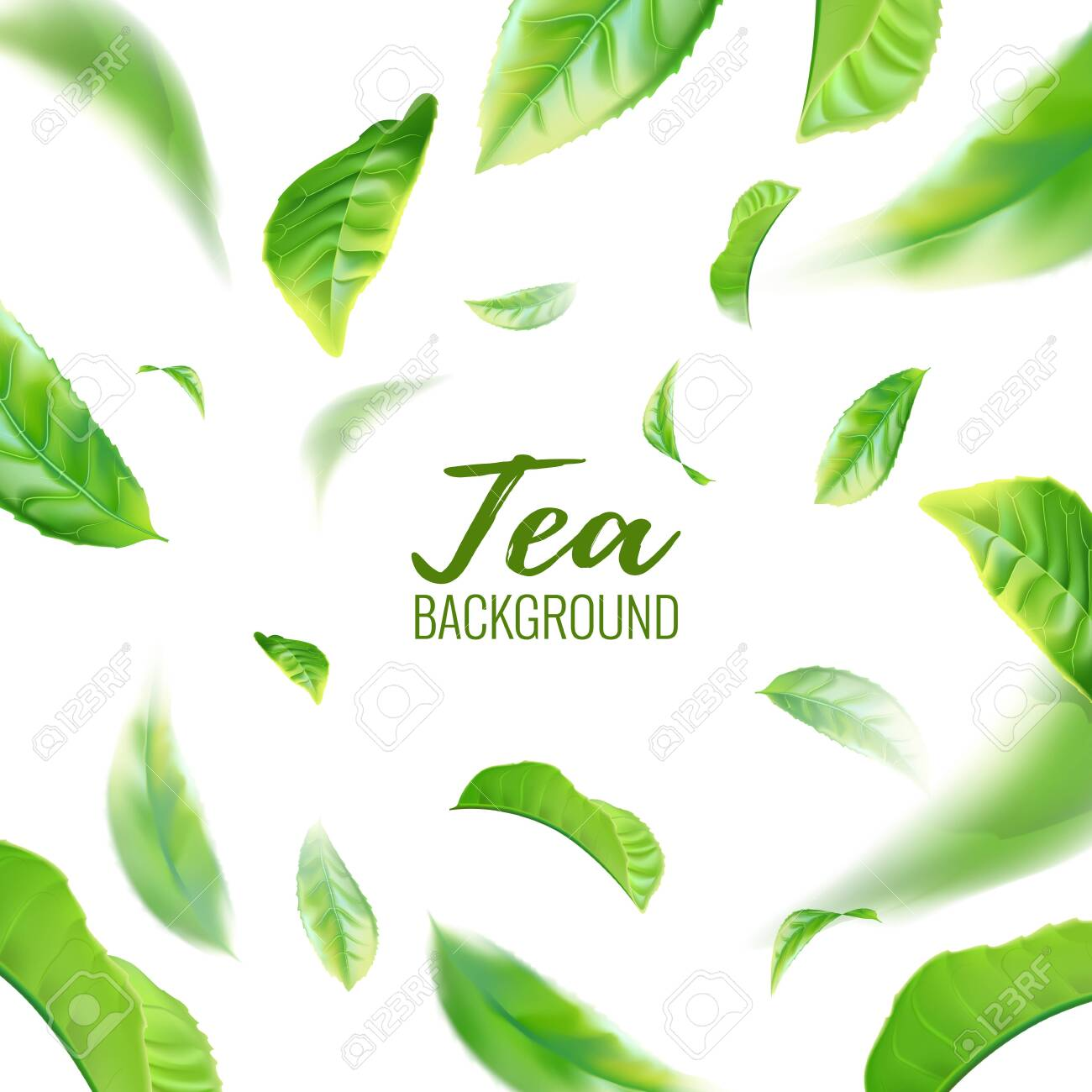 Realistic green tea leaves background for advertising poster. Vector illustration - 128524507