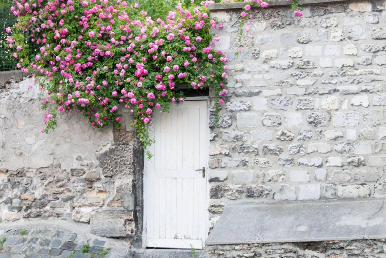 Hinter Rosen Auf Garten Tür Ii Lizenzfreie Fotos Bilder Und Stock
