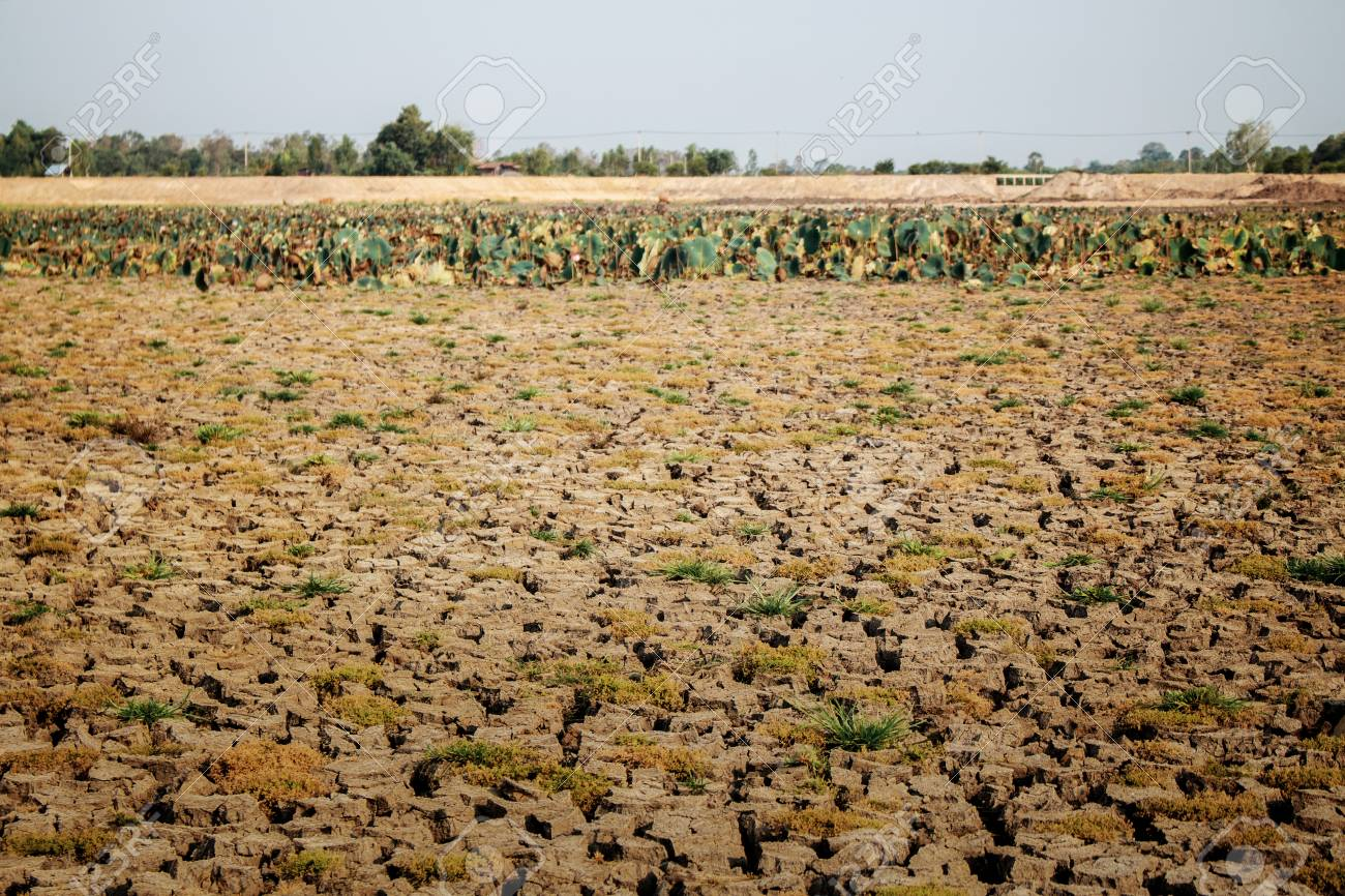 Arid soil of field in countryside with the sky. - 106002037