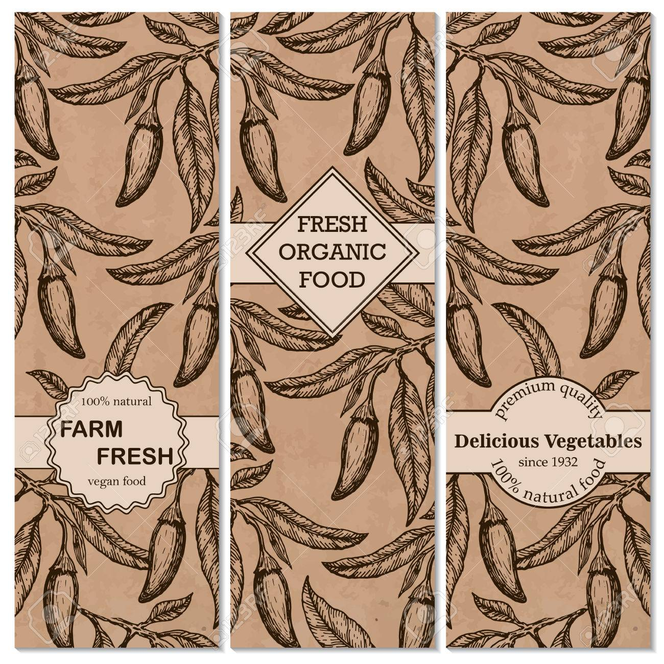 Template For Label Design With Vintage Sketched Chili Pepper. Can ...