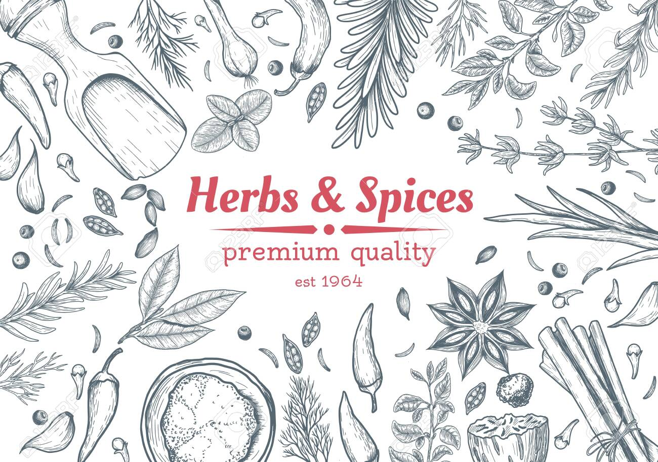 Spice and herbs top view frame. Spice and herbs design. Vintage hand drawn sketch vector illustration. Vector Design template. Vector card design with hand drawn spices and herbs. - 131852736