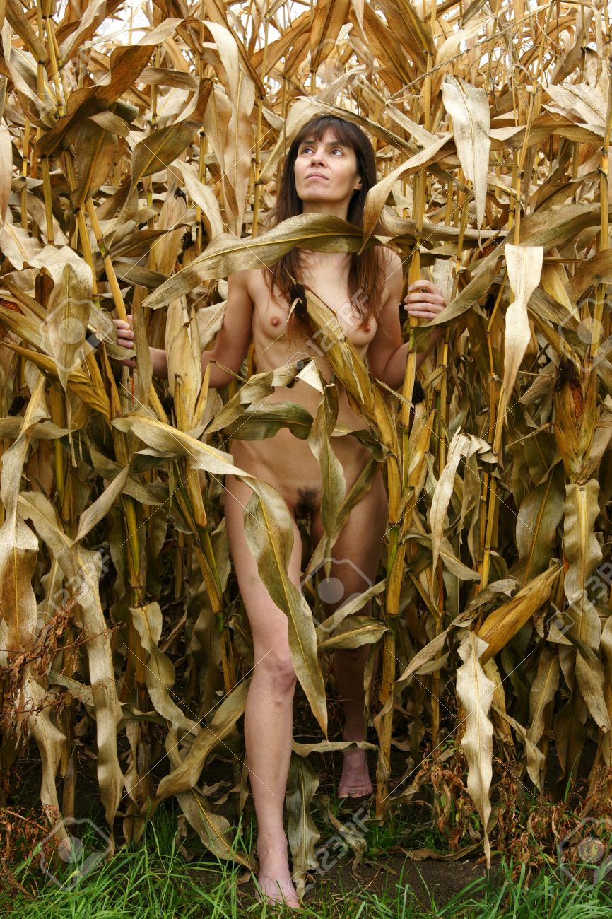 Wife standing nude in cornfield