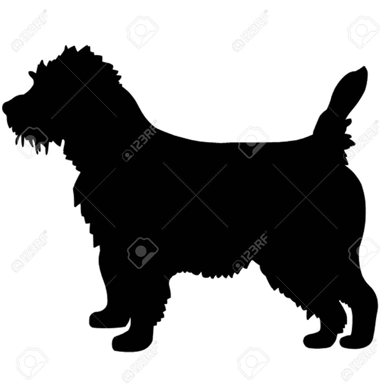 Cairn Terrier Dog Royalty Free Cliparts Vectors And Stock Illustration Image 37742846
