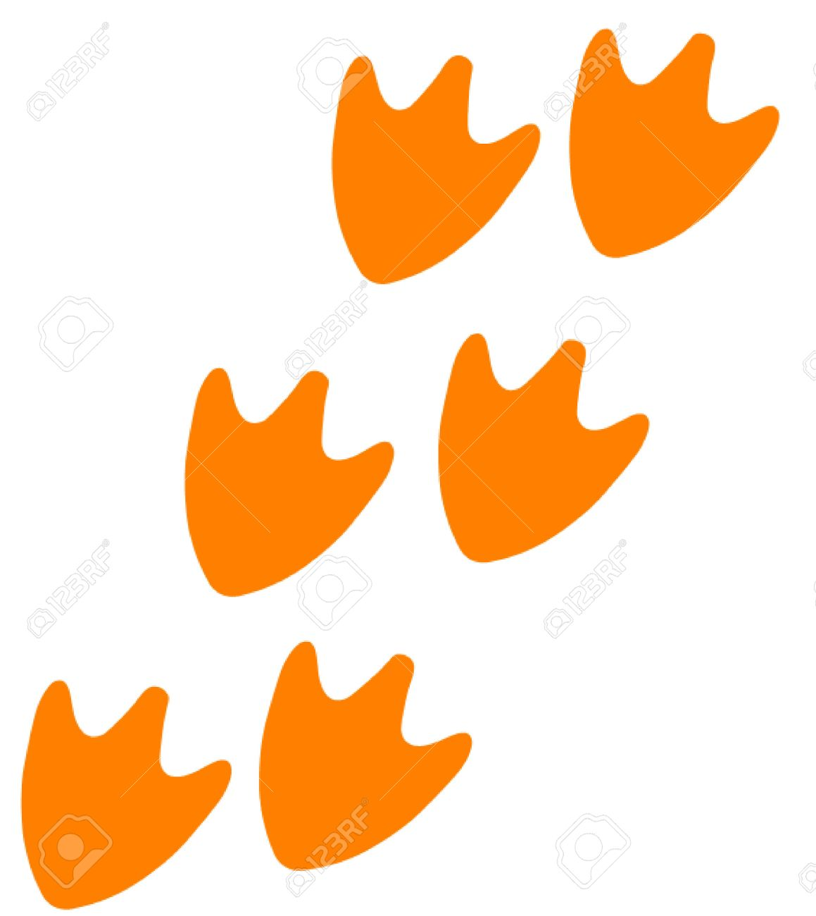 track of duck feet royalty free cliparts vectors and stock
