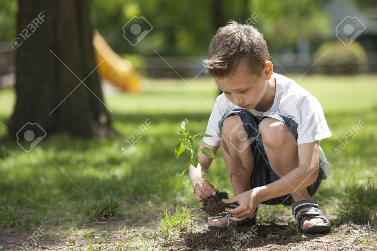 Little boy planting - 15674183