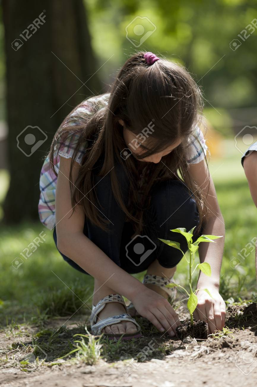 Children planting a new tree. Concept: new lifew, environmental conservation - 15674262