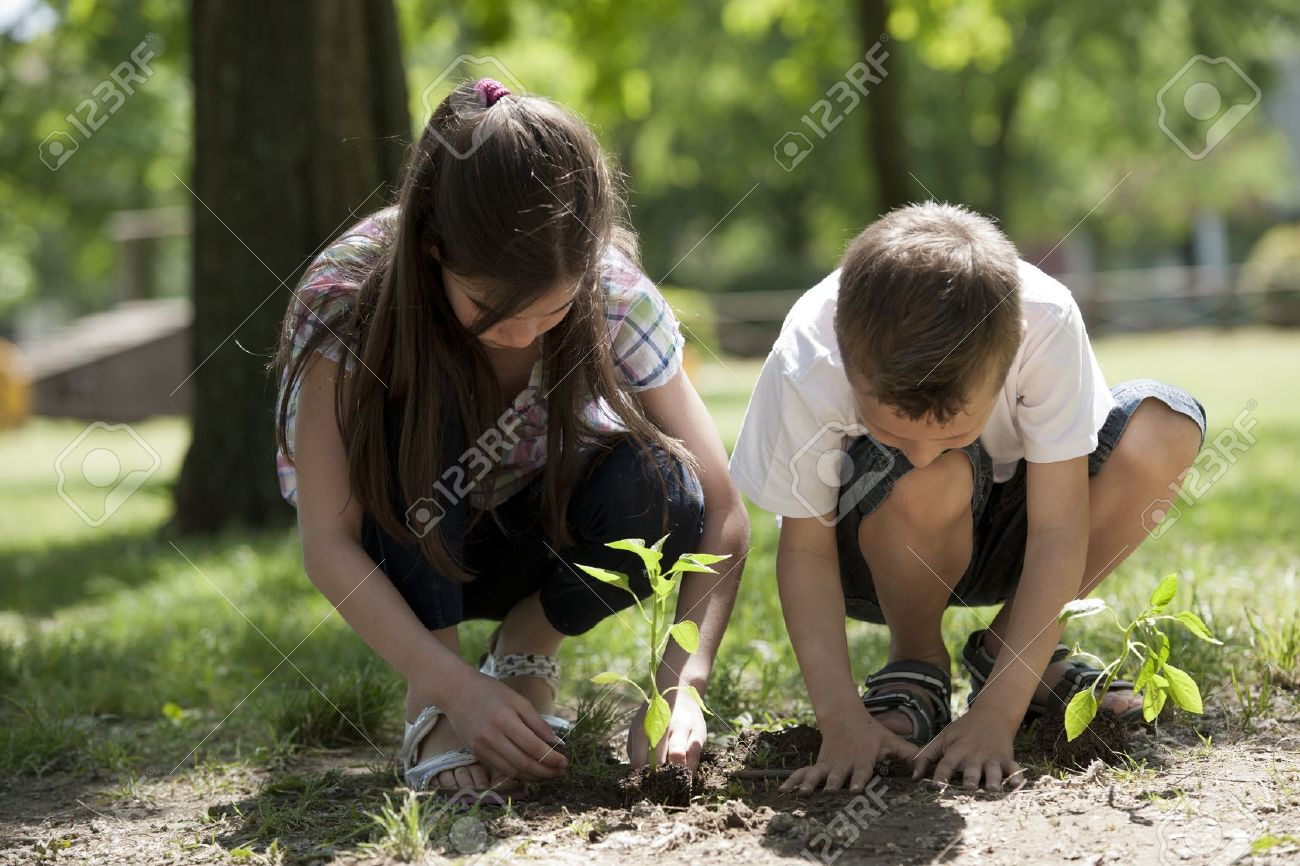 Children planting a new tree. Concept: new lifew, environmental conservation - 15674264