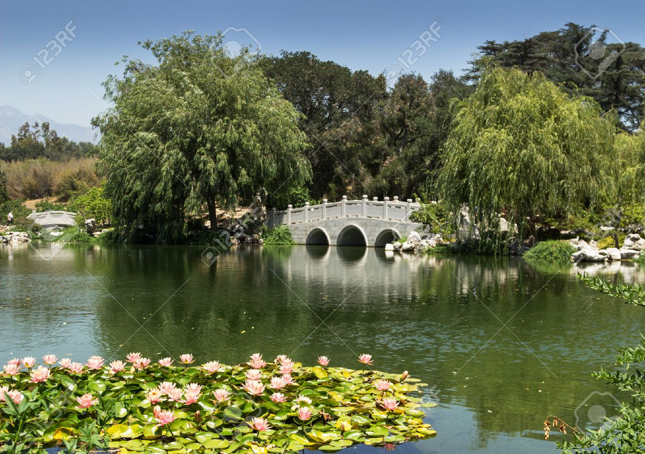 Chinese Garden At The Huntington Botanical Gardens In Southern California  Stock Photo   41680768