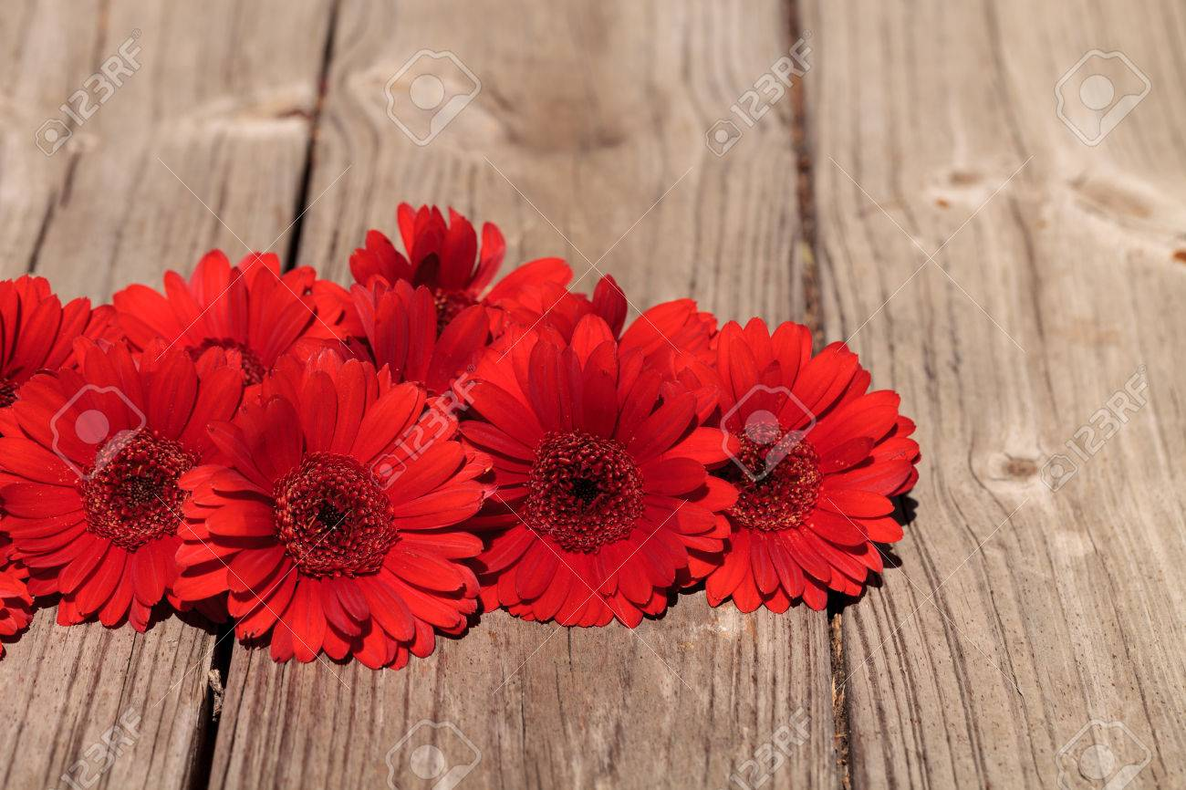red gerbera daisies clustered on a rustic wood picnic table