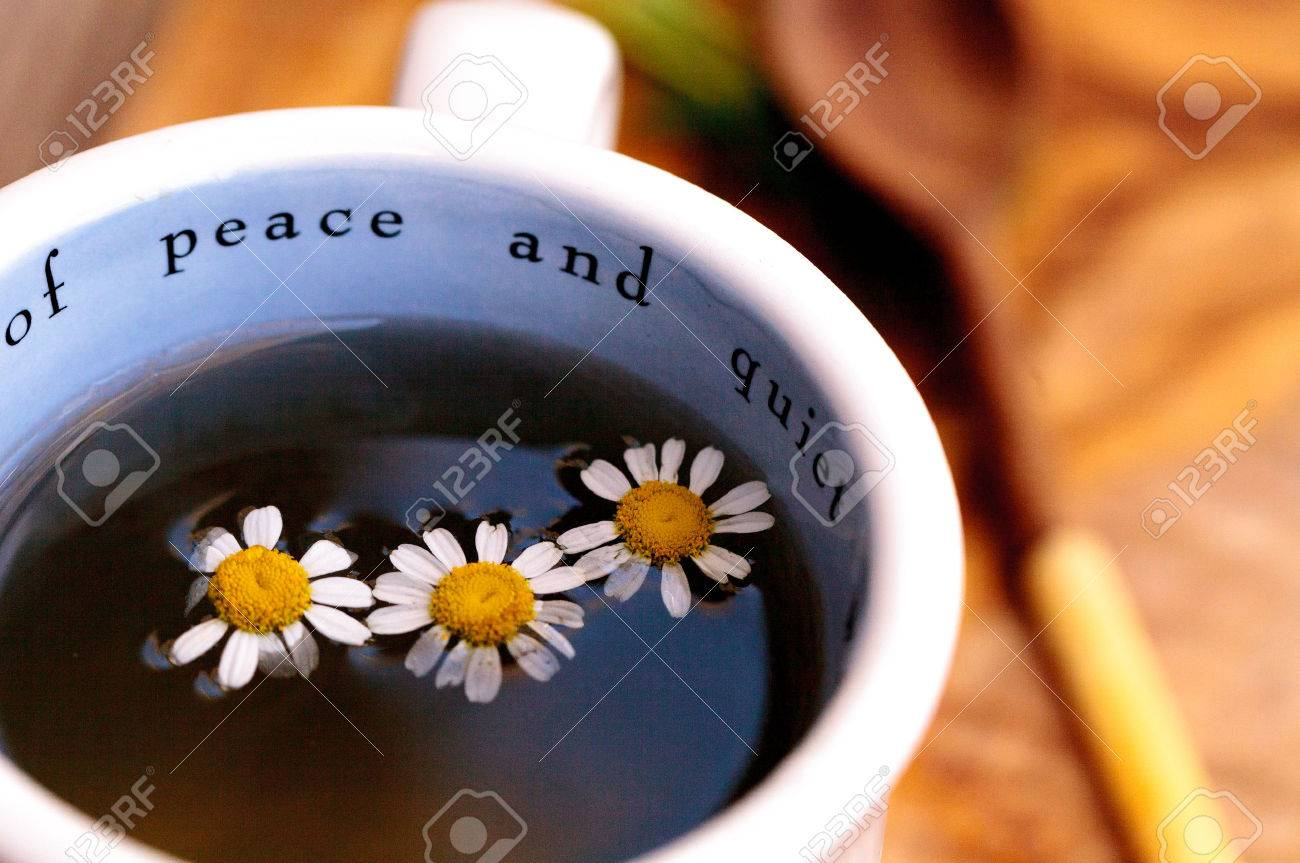 Chamomile Tea With Chamomile Daisy Flowers In A Hot White Cup