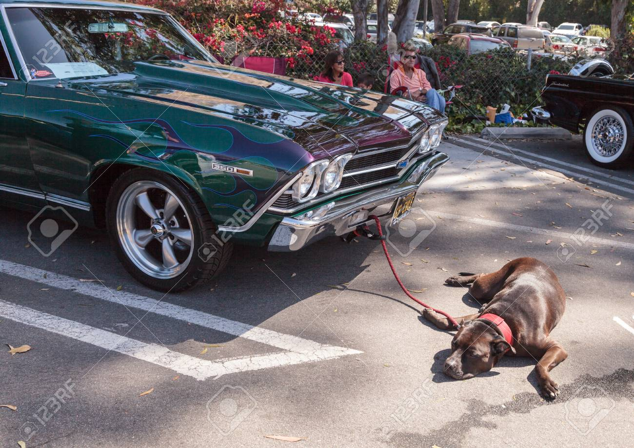 Chevy Chevelle 2016 >> Laguna Beach Ca Usa October 2 2016 Green And Blue 1969 Chevy