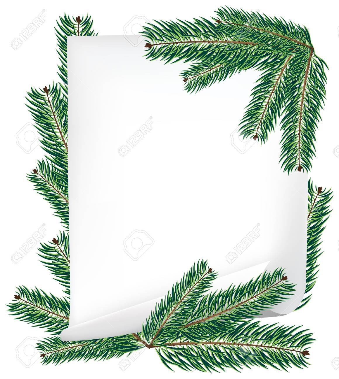 Sheet of paper and spruce branches isolated on white - 11528038