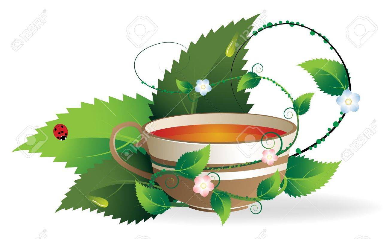 Vegetative shoots encircle the cup of herbal tea Stock Vector - 13187807