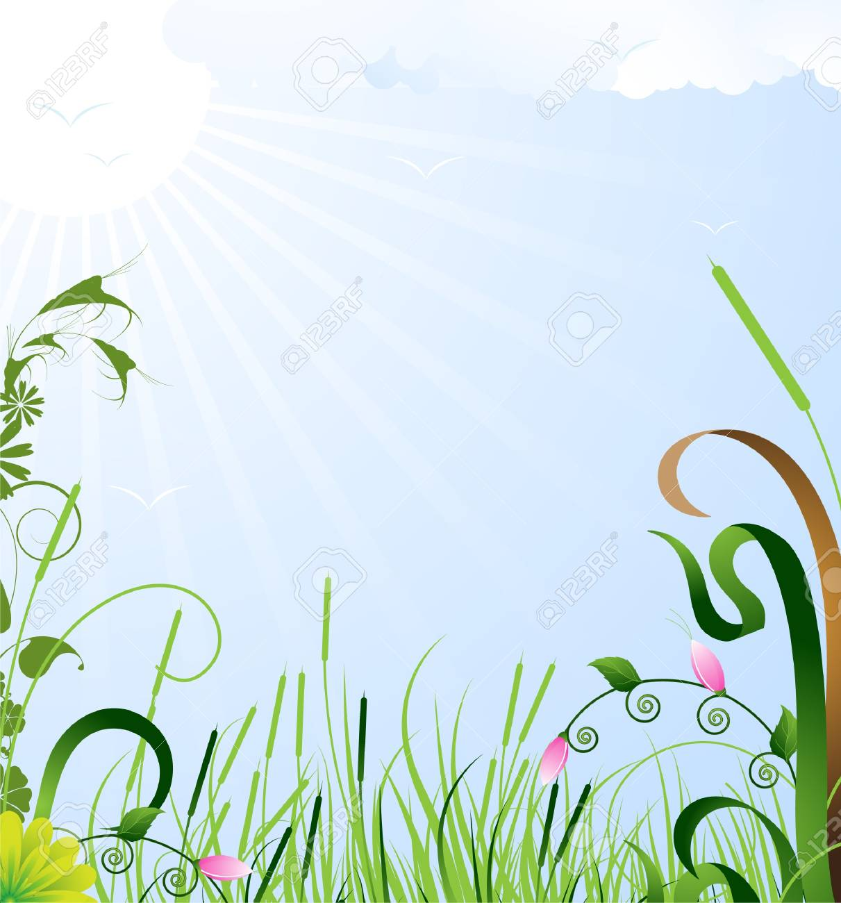 Bright wild flowers bloom in a meadow under the summer sun Stock Vector - 14366524