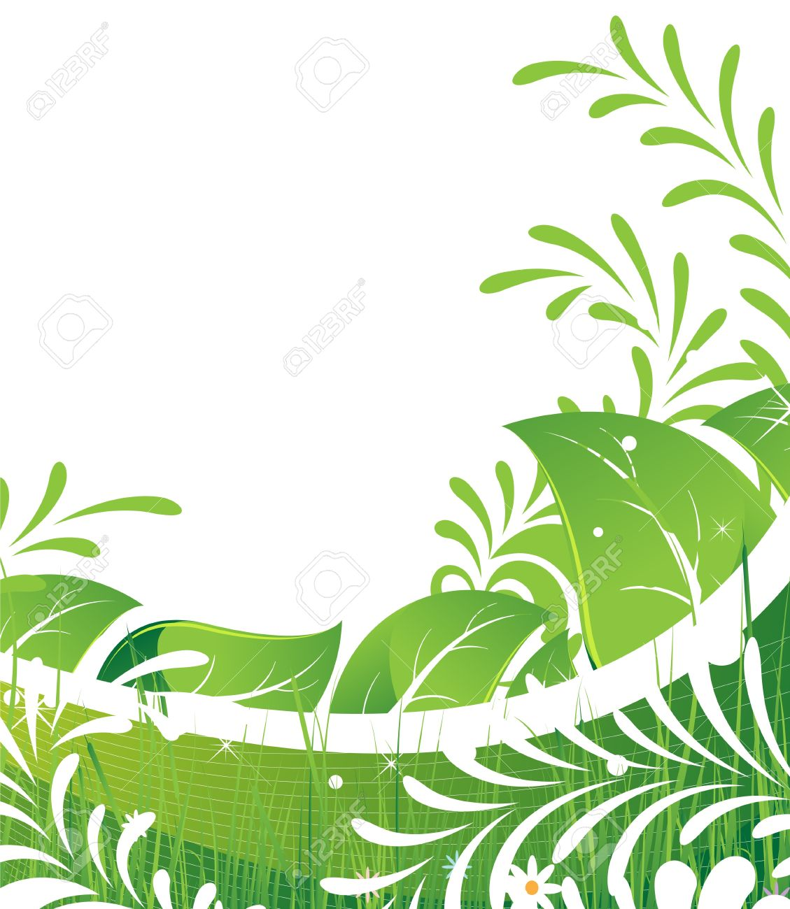 Abstract foliage and flowers on a white background - 14537014