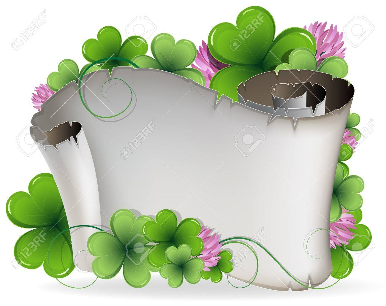 Ancient scroll and clover on a white background St Patrick - 18315497