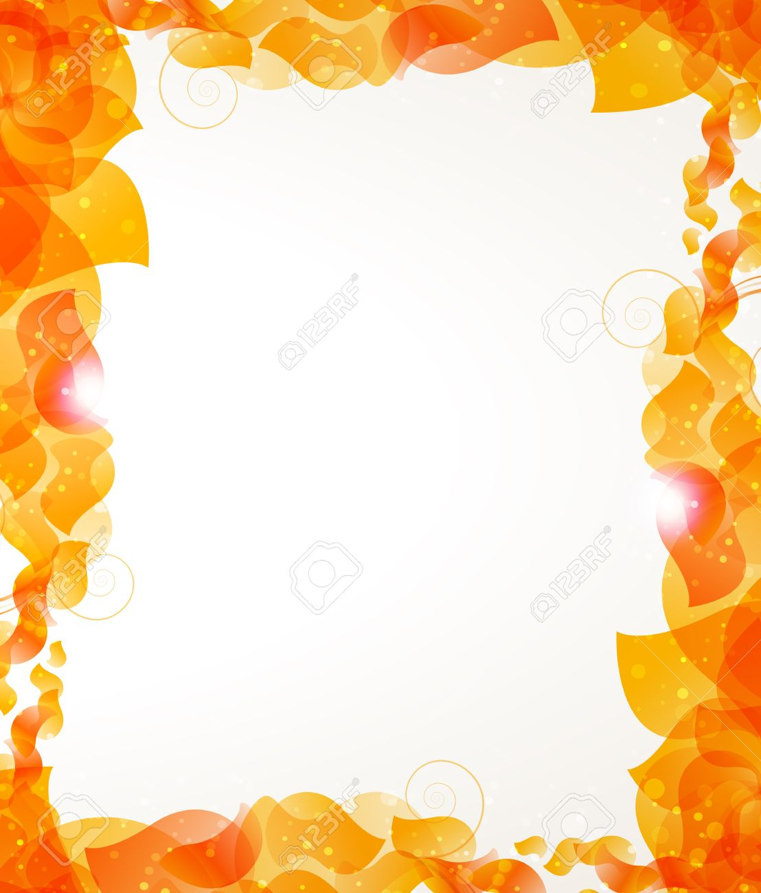 Transparent Orange Petals On A White Background. Abstract Frame ...