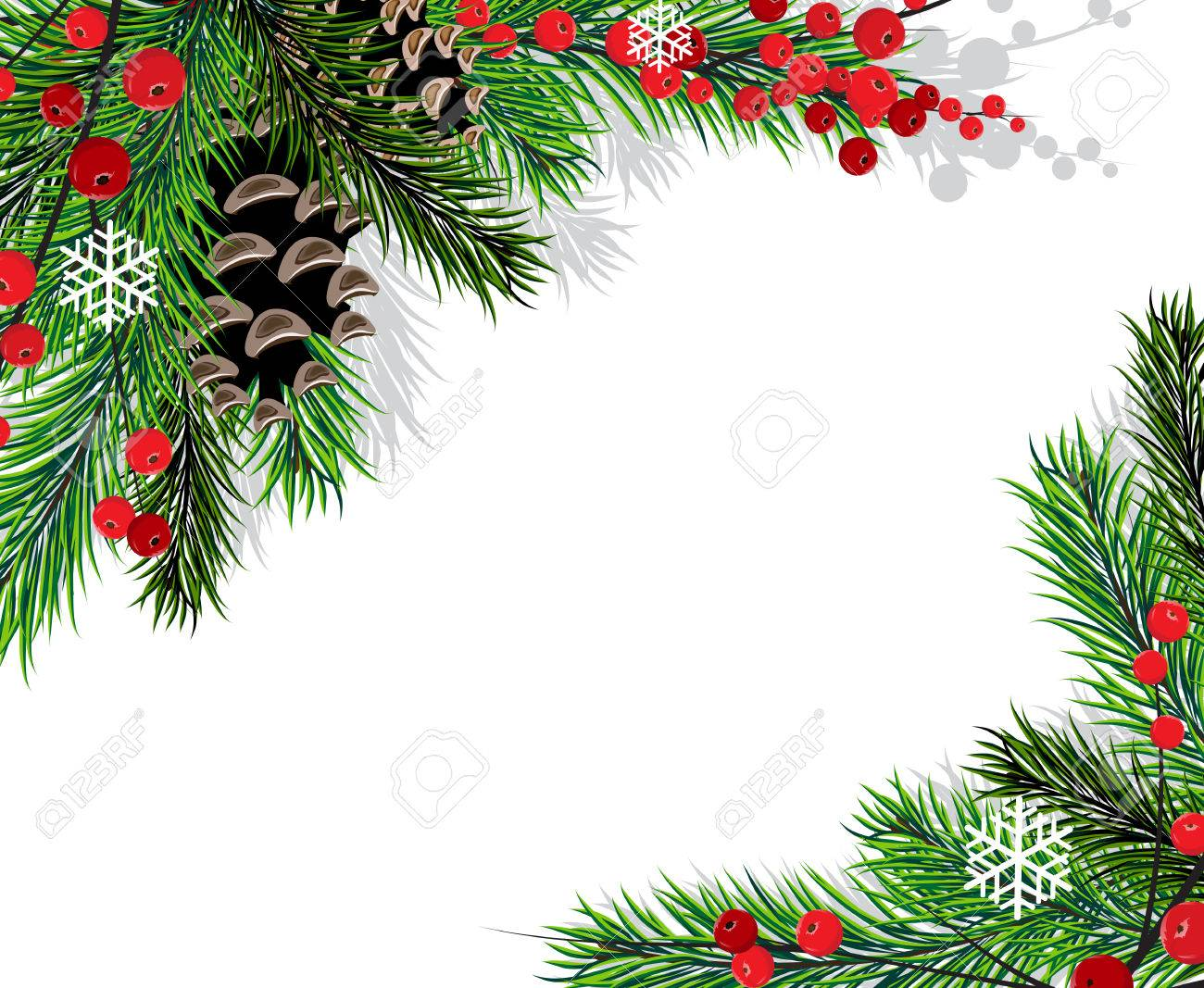 Spruce branches with cones and red berries on a white background - 24123003